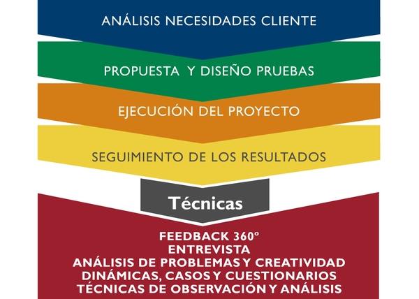 Análisis necesidades cliente; Propuesta y diseño de pruebas; Ejecución del proyecto; Seguimiento de los resultados;  TÉCNICAS: Feedback 360º; Entrevista; Análisis de problemas y creatividad; Dinámicas, casos y cuestionarios; Técnicas de observación y análisis